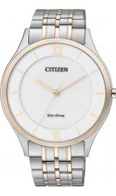 Citizen Eco-Drive AR0075-58A